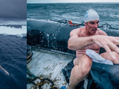 Antarktisz úszás