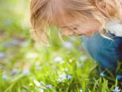 Gyerek szaglás