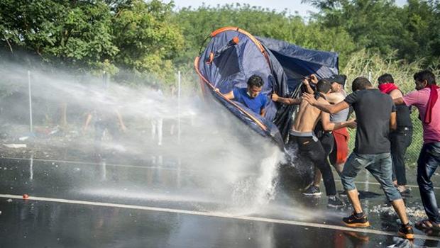 migrant6