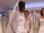 Fotó: RTL, Fókusz videóból